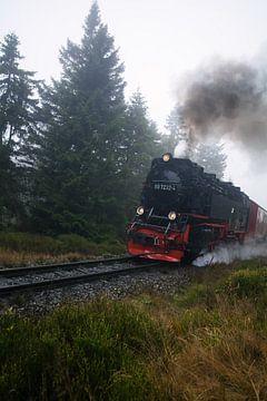 Brockenbahn van Alena Holtz