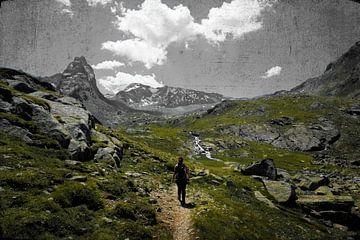 Bergpanoram in den Alpen von Toni Stauche