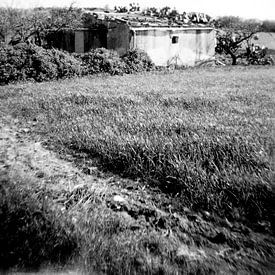 Landschap Sicilie van Liesbeth Govers voor omdewest.com
