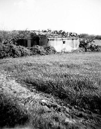 Landschap Sicilie