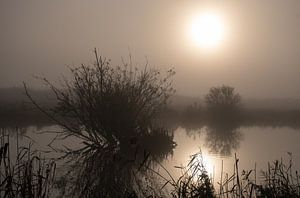 mysterieuze sfeer in de polder van Jan Brand
