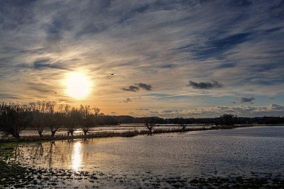 Zakkende zon met reflectie in het water en een bewolkte hemel boven een donker moeraslandschap op ee