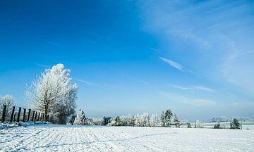 Winterlandschap van Norbert Sülzner
