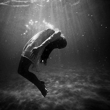 Unterwasser von Laurance Didden