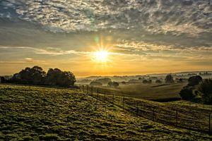 Stralende zonsopkomst, Leefdaal van