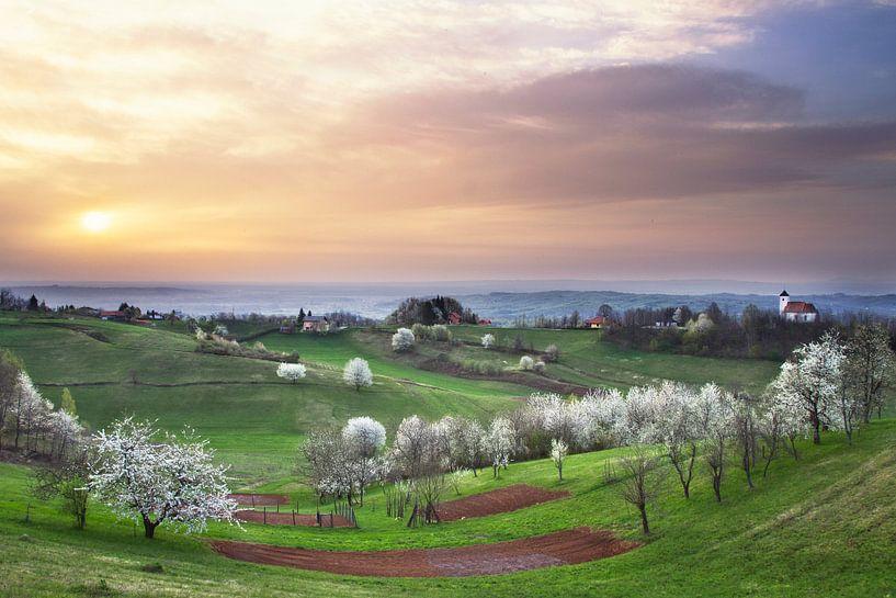 Heerlijk lente! van René Pronk