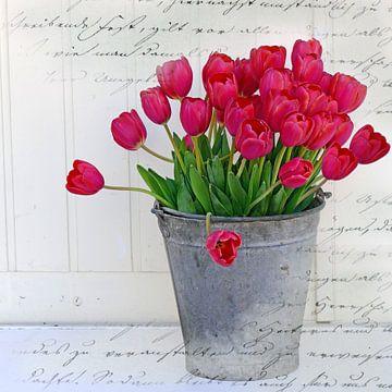 Tulpen im Zinkeimer von christine b-b müller