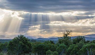 zonnestralen  van Bert Hunink