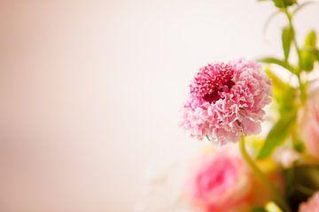 Bloemen sur Anne-Fleur Eggengoor
