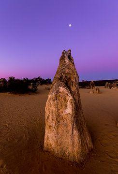 Le célèbre parc national du désert des pinacles au coucher du soleil, juste à la sortie de Perth en  sur Guido Boogert