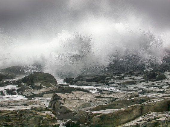 Waves van Alexander Koenders