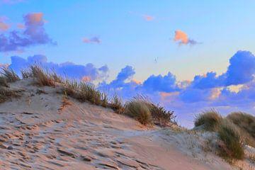 zandduin met prachtige lucht... van Micky Bish