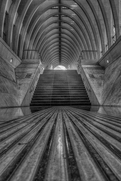 Traphal in het Station Luik-Guillemins van Steve Mestdagh