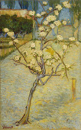 Blühender Birnbaum - Vincent van Gogh von 1000 Schilderijen