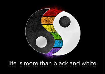het leven is meer dan zwart-wit van Ingo Then