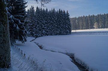 Een besneeuwd veld met stroompje von Andrea Ooms
