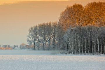 Sneeuwlandschap in Nederland van Andy Van Tilborg