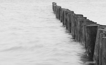 houten palen in het water von Michel Knikker
