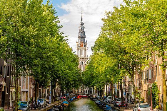 Zuiderkerk Amsterdam tussen bomen