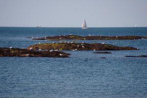 Kust Piriac- sure -Mer Bretagne van wil spijker