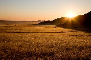 Sonnenaufgang über dem Namib Naukluft Park von Angelika Stern
