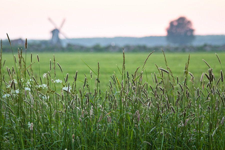 Silhouet Noordermolen