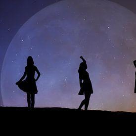 Dansen in het maanlicht van zwergl 0611
