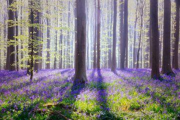 blue fairytale van Els Fonteine