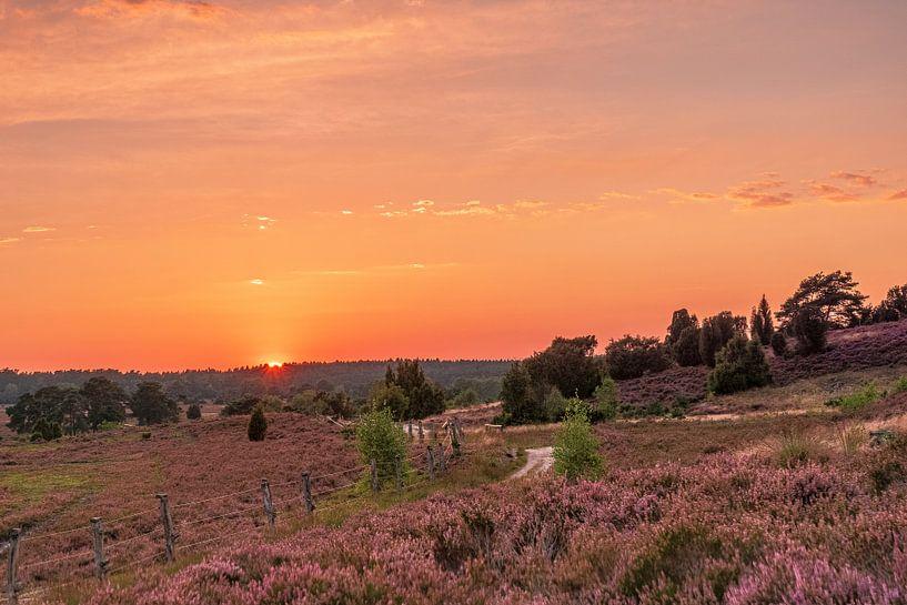 Sonnenuntergang in der Heide von Dieter Rabenstein