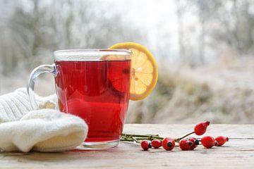 Heißer roter Hagebuttentee mit einer Zitronenscheibe in einem Glasbecher auf einem rustikalen Holzti