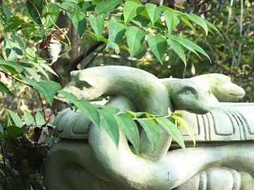 Schlangen von Ilona Picha-Höberth
