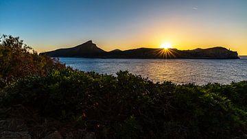Die Dracheninsel von Jens Sessler