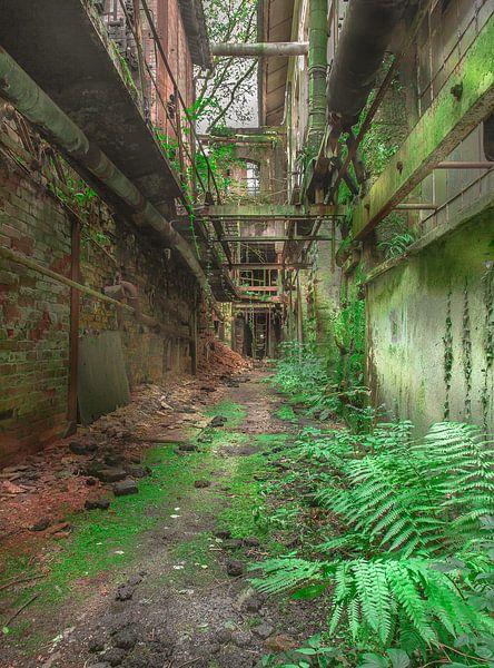 Industrial nature van Olivier Photography