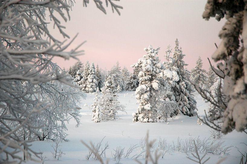 Winter wonderland van Barbara Koppe