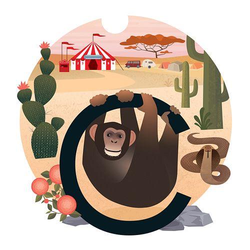 C: Chimpansee en het circus