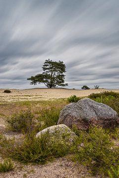 Drenthe typique pendant une tempête sur Dieverdoatsie Fotografie