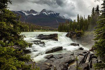 Die Athabasca Falls im Jasper Nationalpark in Kanada von Roland Brack