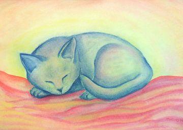 Slapende Kat