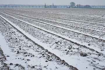 uitgestrekte bollenvelden in de winter van eric van der eijk
