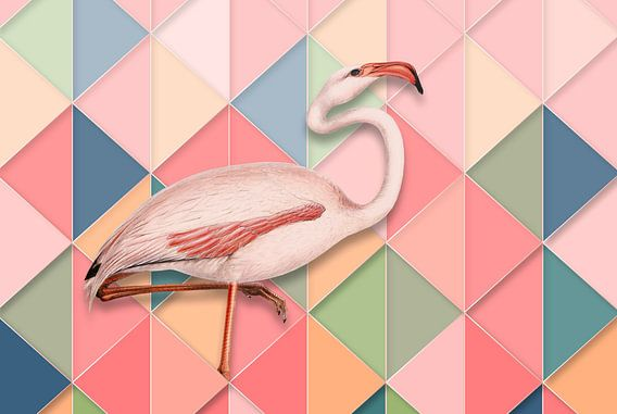 Yes, It's a Flamingo