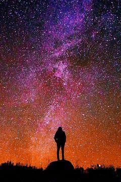 Universum, wonderland en mens van Dirk H. Wendt