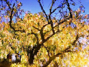 Tree Magic 120 van MoArt (Maurice Heuts)