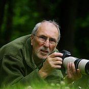 Dieter Ludorf profielfoto
