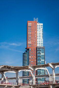 Montevideo Rotterdam von Jasper Scheffers
