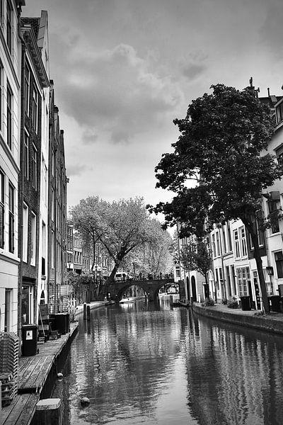 Voorjaaraan de gracht  in Utrecht van Jasper van de Gein Photography