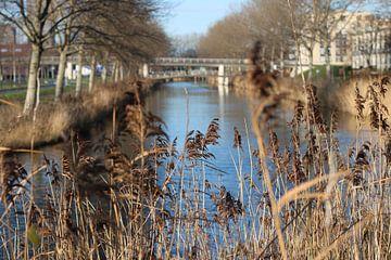 Blick auf die Almere-Brücke von Rosalie Broerze