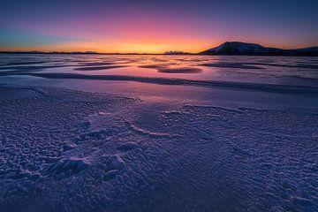 Zonsopkomst op Andoya - Vesteralen, Noorwegen van