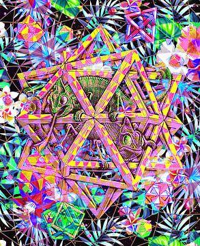 Escher-Sterne und Chamäleons von Giovani Zanolino