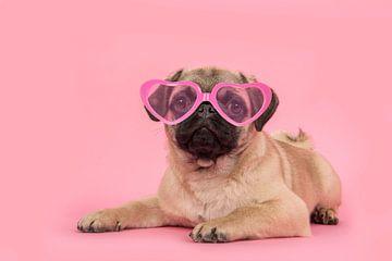 Durch eine rosa Brille von Elles Rijsdijk