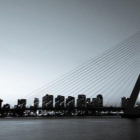 Rotterdam. De Erasmusbrug. van Gerrit de Heus